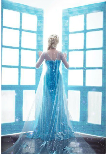 Elsa jurk volwassenen - Bij Bambini